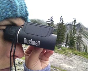 bushnell powerview 10x25 uso